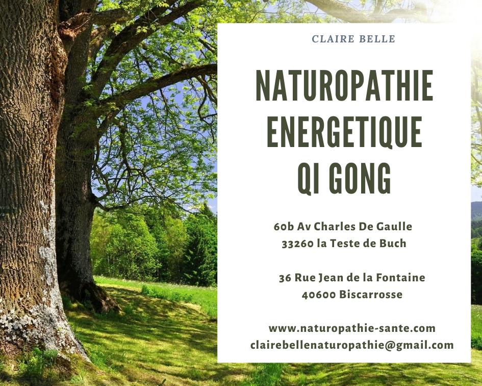 Naturopathie energetique qi gong